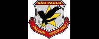 Falcon Sat